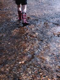 walk through the stream