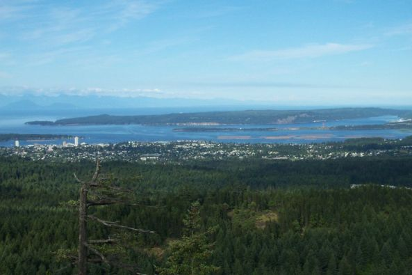 downtown-nanaimo-from-roberts-roost02