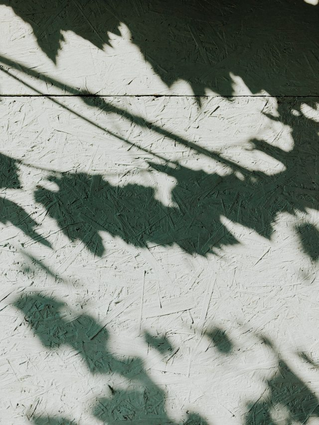 shadow-surface-texture-1451498.jpg