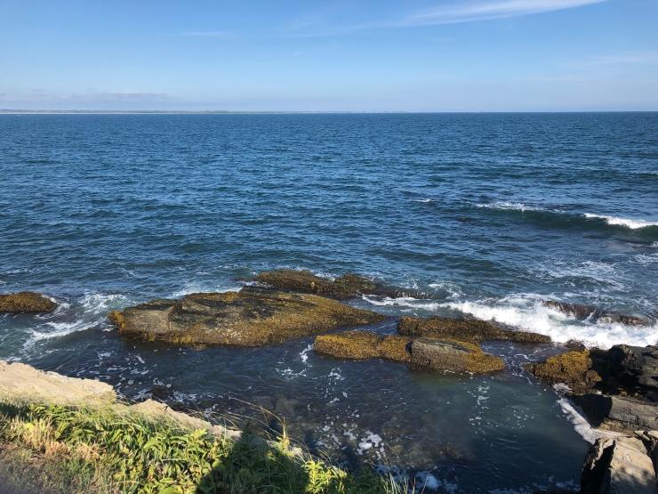 Ocean Pic.jpg